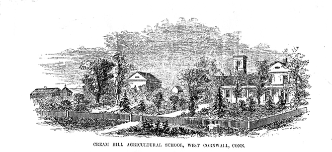 Cream Hill etching