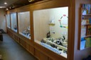 Rocks and Minerals Exhibits